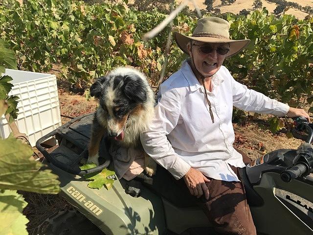 Getting around the vineyard