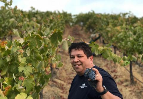 Jeffrey picking grapes